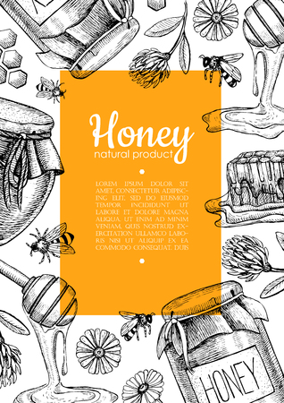 Vector honey bee hand drawn illustrations. Honey jar, bee, honeycomb, flower objects. Honey banner, poster, label, brochure template for business promote. Ilustração