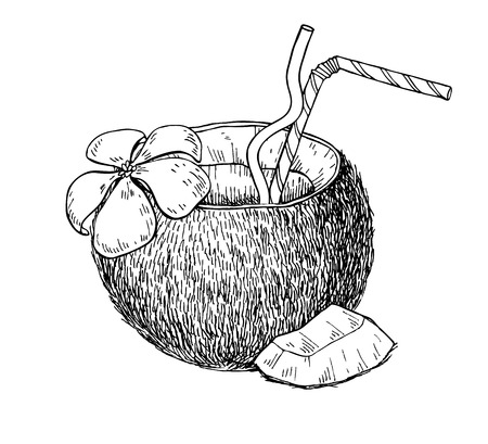 holiday food: Vector hand drawn coconut drink. Tropical summer fruit engraved style illustrations. Detailed food drawing. Great for label, poster, print, vacation banner