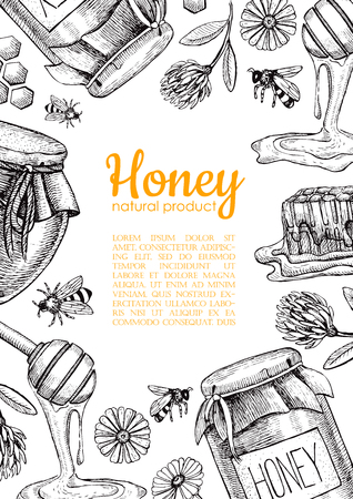promote: honey bee illustrations. Honey jar, bee, honeycomb, flower objects. Honey , poster, label, brochure template for business promote.