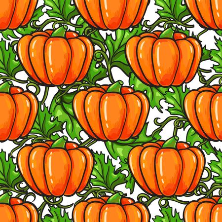Pumpkin vector seamless pattern drawing. Isolated artistic vegetable background with branch and leaves.  Hand drawn harvest illustration.