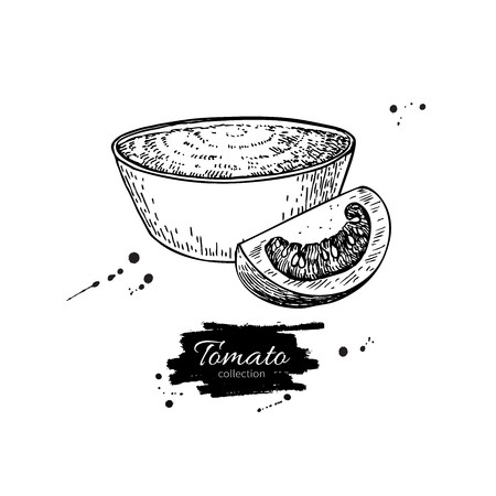tomato slice: Tomato sauce Drawing. Vector isolated illustration with bowl full of pasta and tomato slice. Great for label, poster, sign Illustration