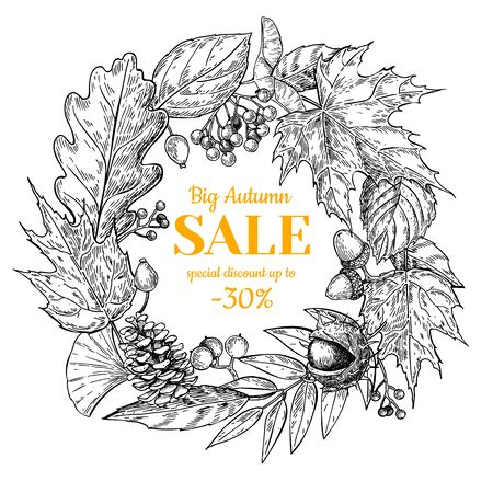 etch: Autumn sale wreath vector banner with leaves and berry. Hand drawn fall  illustration with frame and botanical elements. Great for poster, banner, voucher, offer, coupon, business promote. Illustration