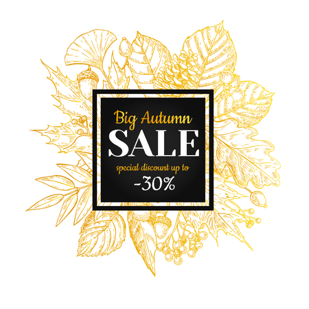 black berry: Autumn sale vector gold banner with leaves and berry. Hand drawn fall  illustration with frame and botanical elements. Great for poster, banner, voucher, offer, coupon, black friday sale. Illustration