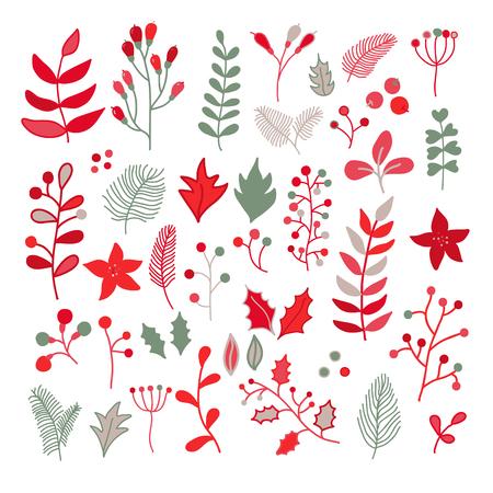 クリスマス花のベクトル図面は、ヒイラギ、ポインセチア、ヤドリギ、枝、葉、ベリーを設定します。赤、緑、灰色および白の色でシンプルな落書  イラスト・ベクター素材