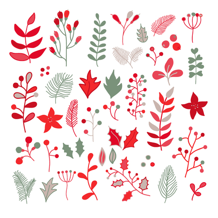 Christmas floral vector drawing set with holly, poinsettia, mistletoe, branch, leaves and berry. Simple doodle plants in red, green, gray and white colors. Great for holiday decor