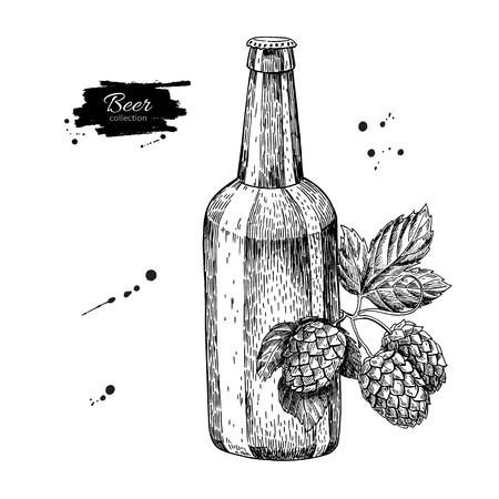 alcoholic drink: Beer glass bottle with hop. Sketch style vector illustration. Hand drawn isolated beverage object on white background. Alcoholic drink drawing. Great for restaurant, bar, pub menu, oktoberfest