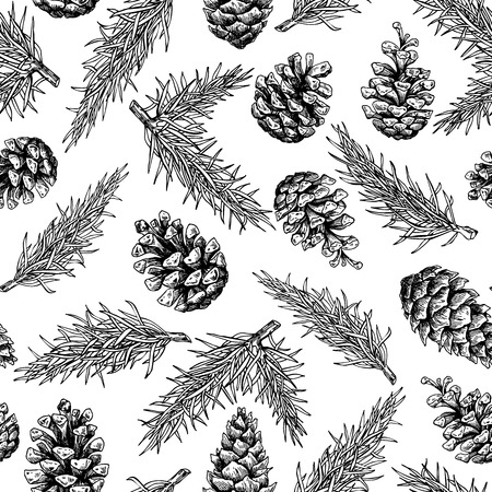 Pine cone and fir tree seamless pattern. Botanical hand drawn vector background. Isolated xmas pinecones. Engraved forest collection. Great for greeting cards, backgrounds, holiday decor Ilustração