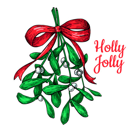 Mistletoe with bow and ribbon. Christmas card with decor plant. Hand drawn vector illustration. Botanical xmas element. Holly with leaves and berry. Great for banner, poster, holiday decoration. Illustration