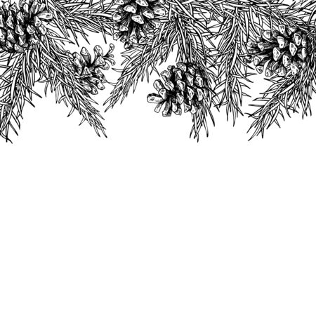 Fir tree and pine cone hand drawn vector square frame for winter and holiday decor. Botanical xmas and new year illustration. Great for greeting card, poster, banner 矢量图像