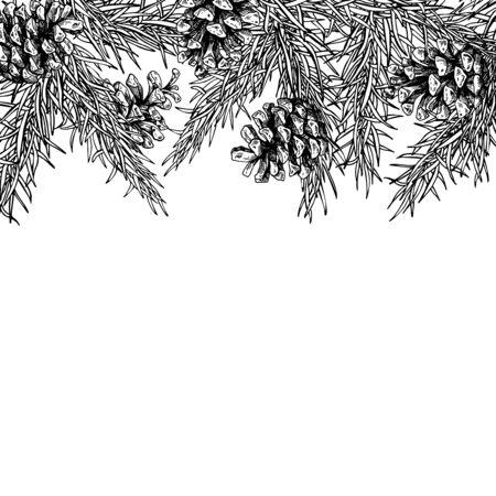 Gezeichneter Vektorquadratrahmen des Tannenbaums und des Kiefernkegels Hand für Winter- und Feiertagsdekor. Botanische Weihnachten und Illustration des neuen Jahres. Ideal für Grußkarten, Poster, Banner