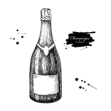 etch glass: Champagne bottle. Hand drawn isolated illustration. Alcohol drink in engraved style. Vintage sketch. Beverage drawing for bar and restaurant menu, poster, banner. Celebration concept