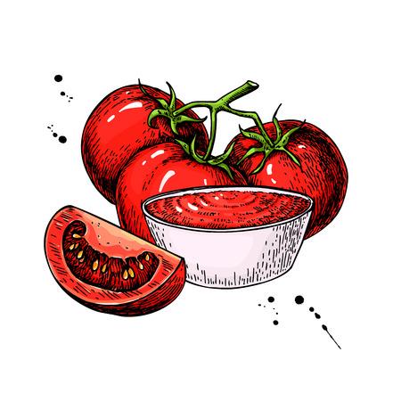 Salsa di pomodoro Disegno. Vettoriale, illustrazione, con una ciotola piena di pasta, ramo di pomodoro e fetta. Dettagliata schizzo cibo vegetariano. prodotto del mercato Farm. Grande per l'etichetta, manifesto, segno