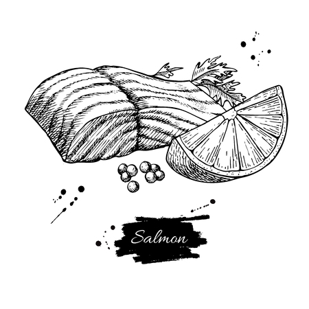 fillet: Salmon fillet hand drawn vector illustration. Engraved style vintage seafood.