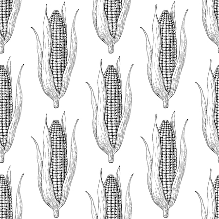 Corn cob hand drawn vector seamless pattern. Isolated Vegetable engraved style wallpaper. Detailed vegetarian food drawing. Farm market product. Great for menu, label, icon