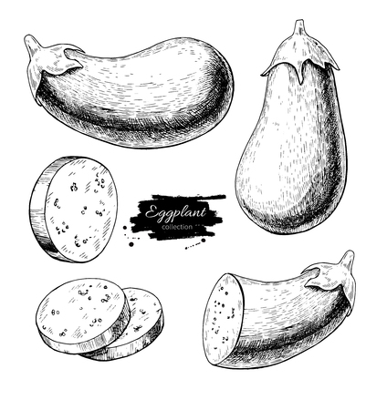 Aubergine hand getrokken vector illustratie set. Geïsoleerd Plantaardig gegraveerd stijlvoorwerp met gesneden stukken.