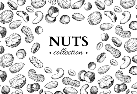 Nuts vector vintage frame illustration. Hand drawn engraved food objects.