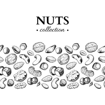 Noten vector vintage illustratie. Hand getrokken gegraveerde voedselvoorwerpen. Stock Illustratie