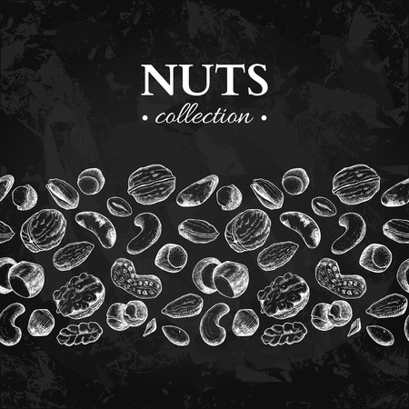 Nuts vector vintage border illustration Ilustrace
