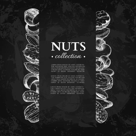 Nuts vector vintage frame illustration