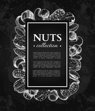 Nuts vector vintage frame illustration.