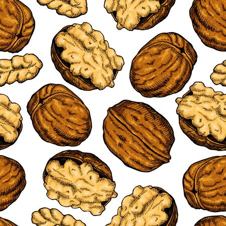 Walnut nuts vector hand drawn seamless pattern