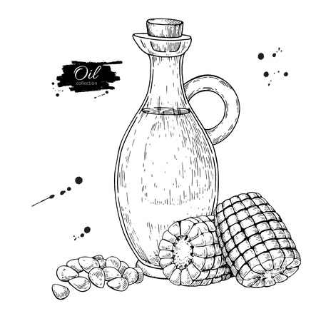 etch glass: Bottle of corn cooking oil. Vector Hand drawn illustration. Glass pitcher vintage
