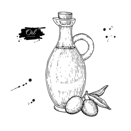 Bottle Of Olive Oil And Branch Vector Hand Drawn Illustration Glass Pitcher Vintage Drawing Isolated