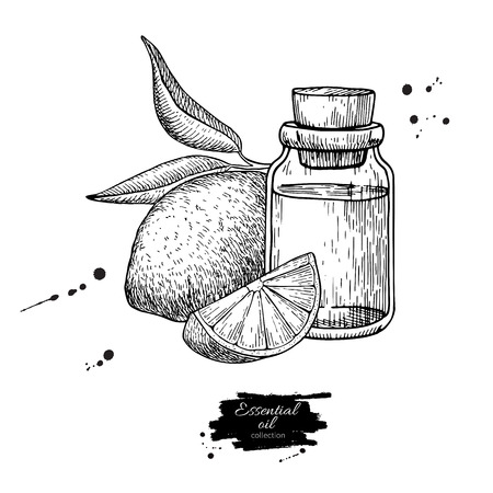 Lemon essential oil bottle and lemon fruit hand drawn vector illustration. Isolated drawing for Aromatherapy treatment, Illustration