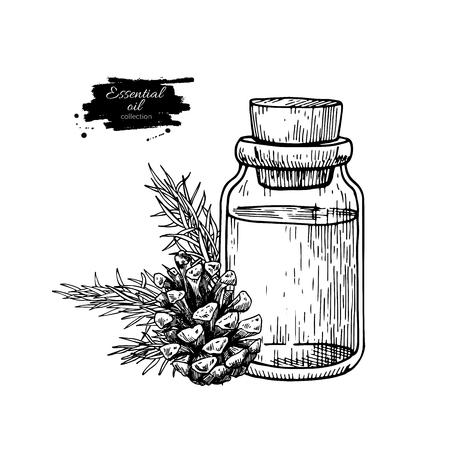 Bouteille d'huile essentielle de pin et illustration vectorielle de sapin dessinés à la main. Dessin de plante isolée pour l'aromathérapie Vecteurs
