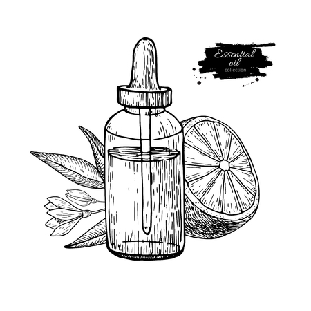 medical drawing: Lemon essential oil bottle and lemon fruit hand drawn vector illustration. Isolated drawing for Aromatherapy treatment, Illustration