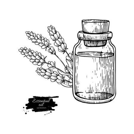 Lavander essential oil bottle and bunch of flowers. Çizim