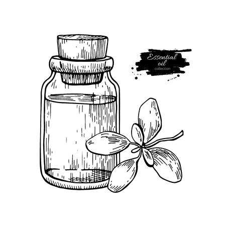 De de essentiële oliefles van marjolein en marjolein verlaat hand getrokken vectorillustratie. Geïsoleerde planttekening voor aromatherapie