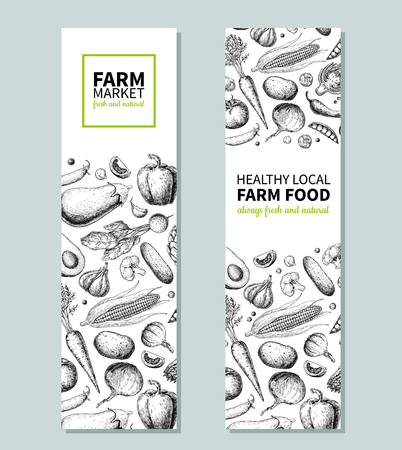Vegetable hand drawn vintage vector banner. Farm Market poster. Vegetarian sketch of organic products. Detailed food drawing