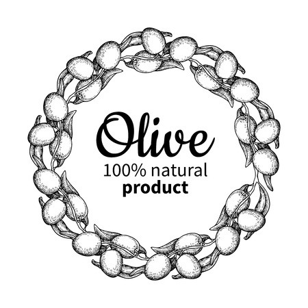 Olive wreath. Hand drawn vector illustration of branch with food