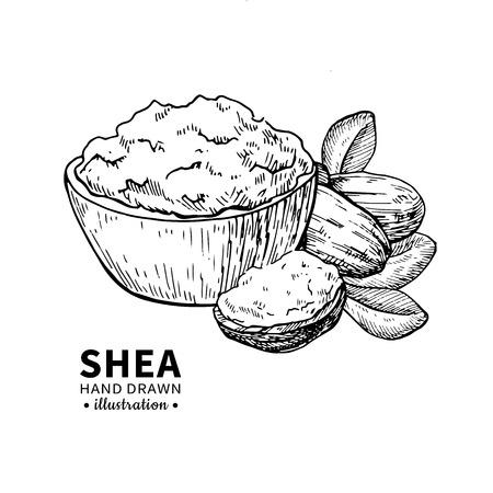 Sheaboter vectortekening. Geïsoleerde uitstekende illustratie van noten, boter en bladeren. Biologische olie gegraveerde stijl schets. Schoonheid en spa, cosmetisch ingrediënt. Geweldig voor label, poster, flyer, verpakkingsontwerp.