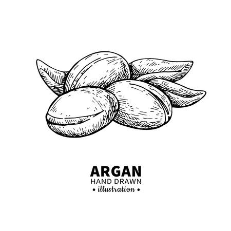 Argan tekening.