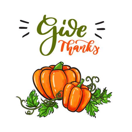 Thanksgiving day vector kaart met handgeschreven letters. Decorat