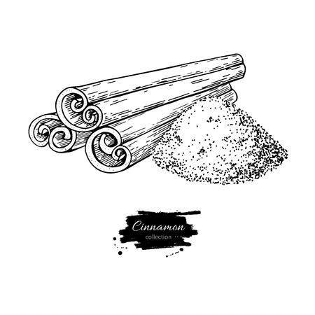 Bâton de cannelle et dessin vectoriel de poudre. Croquis dessiné main Nourriture saisonnière