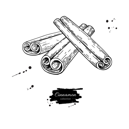 Cinnamon stick vector drawing. Hand drawn sketch. Seasonal food Vettoriali