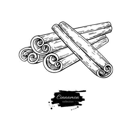 Cinnamon stick vector drawing. Hand drawn sketch. Seasonal food illustration isolated on white. Engraved style spice and flavor object. Cooking and aromaterapy ingredient.