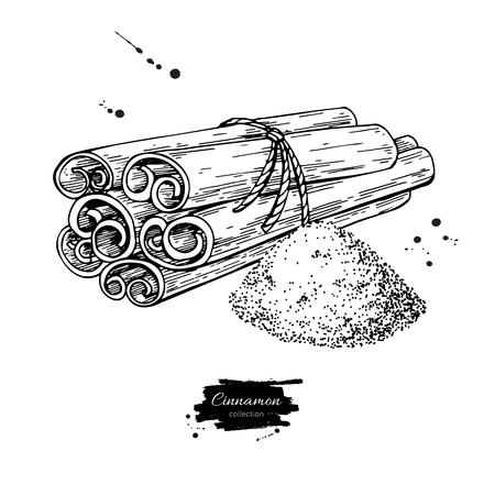 Zimtstange gebundenes Bündel und Puder. Vektorzeichnung. Hand gezeichnete Skizze. Saisonlebensmittelabbildung getrennt auf Weiß. Graviertes Gewürz- und Geschmacksobjekt. Koch- und Aromatherapie-Zutat. Standard-Bild - 87889540