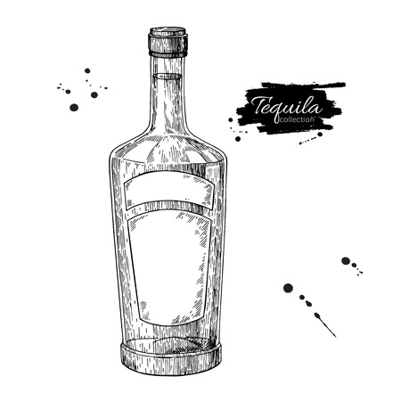 Tequila bottle drawing. Vodka, cocktail, alcohol drink vector illustration. Sketch object for bar or restaurant menu.