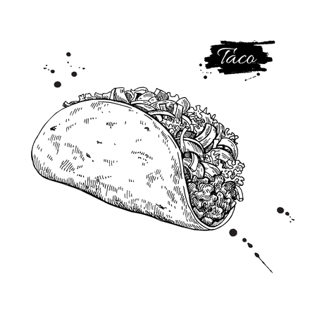 Taco drawing. Traditional mexican food vector illustration. Hand drawn fast food snack. Engraved style cuisine. Sketch for restaurant menu, label, banner