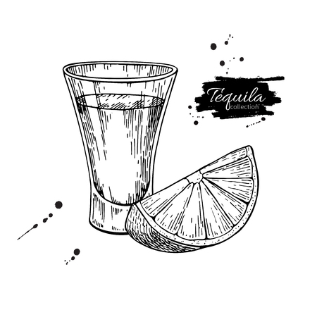 Tequila shot glass with lime. Mexican alcohol drink vector drawing. Sketch of shot glass cocktail with citrus fruit slice. Engraved illustration for label, icon, bar, menu Vettoriali