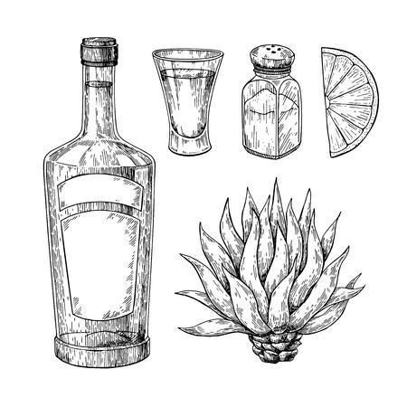 テキーラ ボトル、青いリュウゼツラン、塩のシェーカー、ライムとショット グラス。メキシコのアルコール飲料のベクトル描画します。 写真素材 - 90877202
