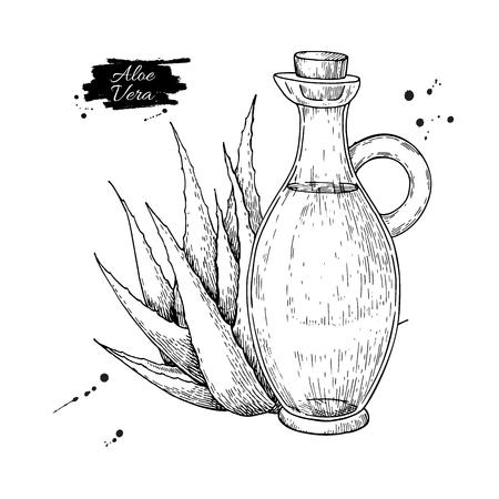 투 수 병에 알로에 베라 주스입니다. 손으로 그려진 된 벡터 illustratio