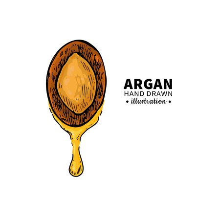 Argan icon.