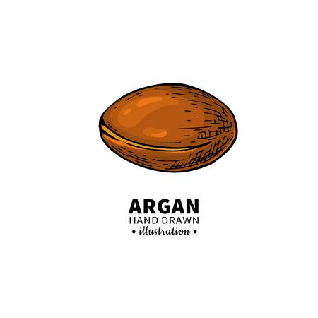 Argan icon.
