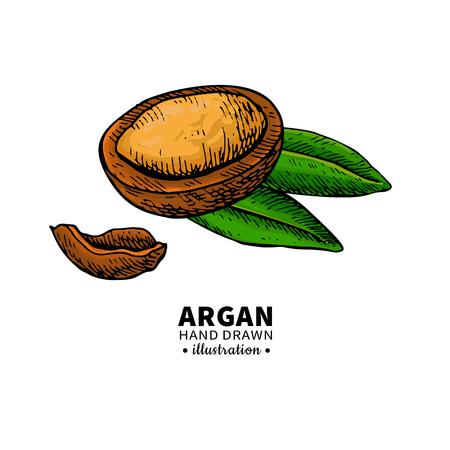 Argan vector drawing.  Organic essential oil sketch.