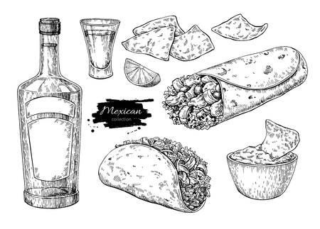 Mexican cuisines illustration.